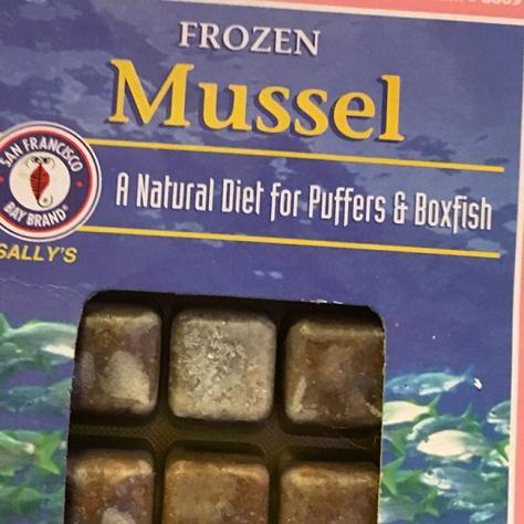 Frozen mussels